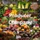 Producer Company, Producer Company Registration