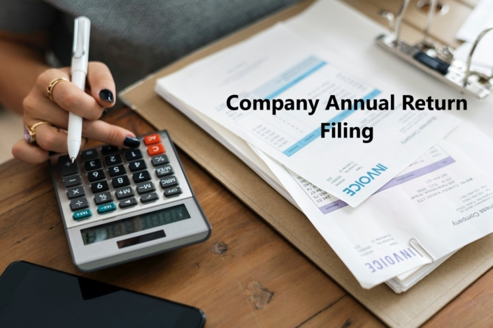 Company Annual Return filing